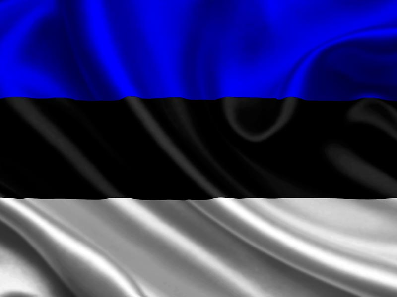 Эстонский язык